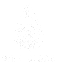 Will Blood Merchandise